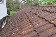 20141124_Roof_CLeaning_2.JPG